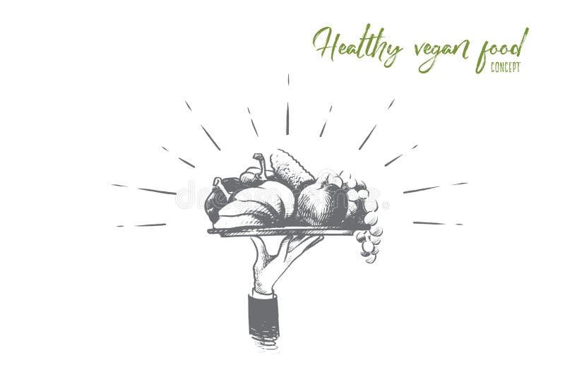 Het gezonde concept van het veganistvoedsel Hand getrokken geïsoleerde vector vector illustratie