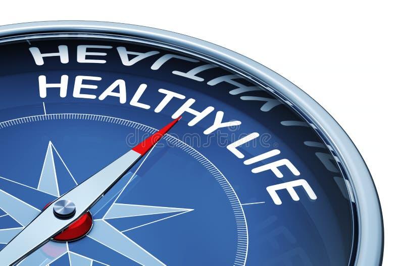Het gezonde leven stock afbeeldingen