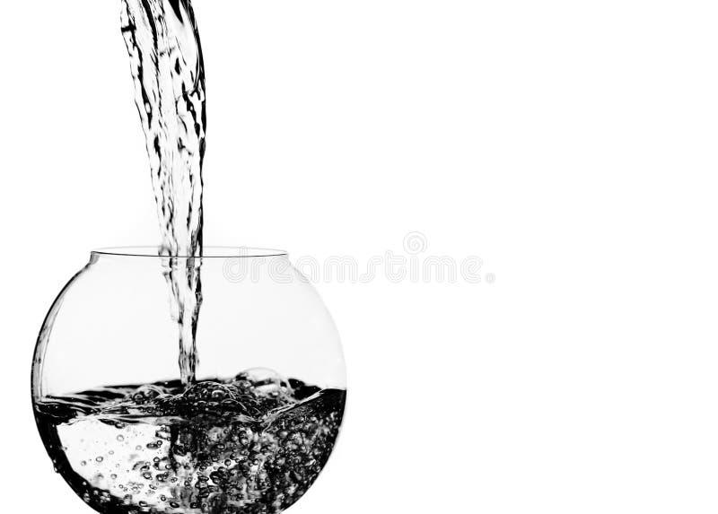 Het Gieten van het water in Kom royalty-vrije stock foto