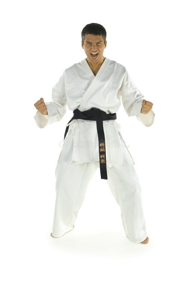 Het gillen karatevechter stock foto's