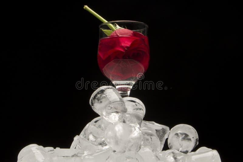 Het glas rode wijn met nam op ijsblokjes toe royalty-vrije stock afbeelding