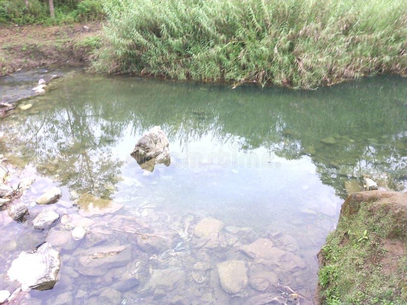 Het glasheldere water vrij stromen royalty-vrije stock foto