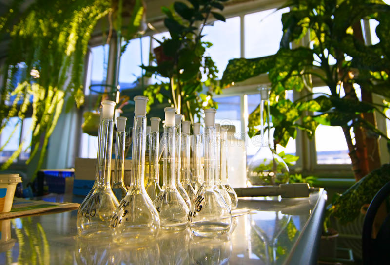 Het Glaswerk van het laboratorium flessen stock foto's
