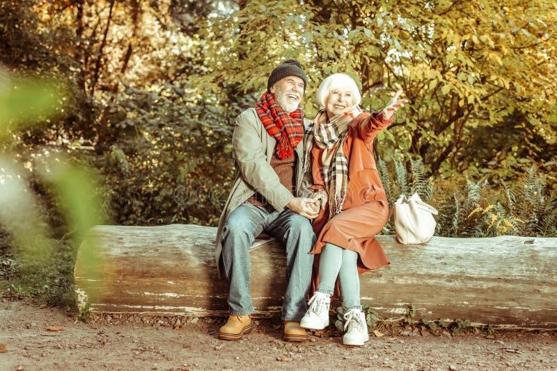 Het glimlachen hogere paarzitting op het logboek van hout royalty-vrije stock foto's