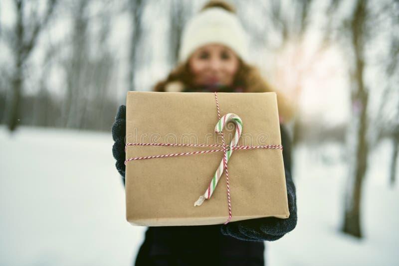 Het glimlachen stelt diverse Kerstmis van de paarholding terwijl het lopen door een de winterbos voor stock foto