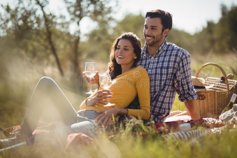 Het glimlachen van de jonge wijnglazen van de paarholding terwijl het ontspannen op picknickdeken royalty-vrije stock foto