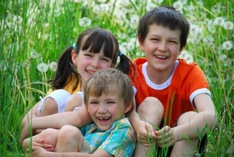 Het glimlachen van jonge geitjes op grasrijk gebied stock foto's