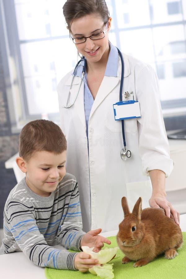 Het glimlachen van jongens voedend konijn bij de kliniek van huisdieren royalty-vrije stock afbeeldingen
