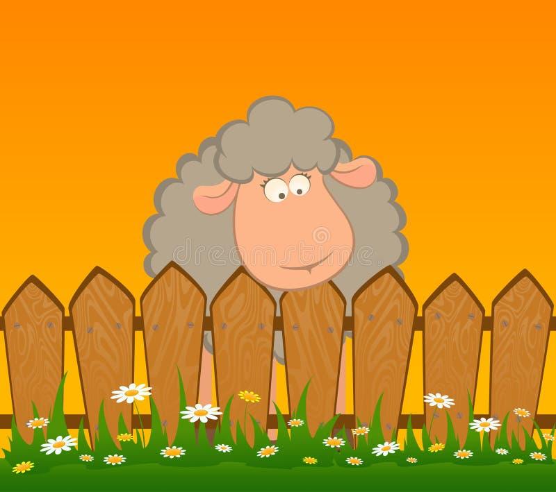 Het glimlachen van schapen na een omheining stock illustratie