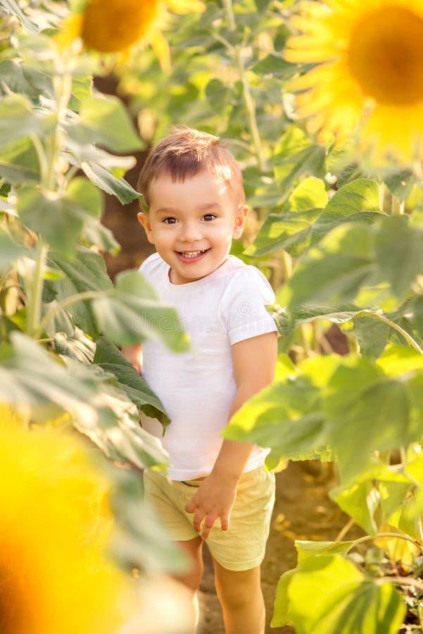 Het glimlachen van weinig jongen die zich onder zonnebloemgebied bevinden De zomerpret en het leven van het land in openlucht stock foto