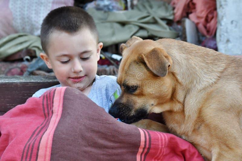 Het glimlachen van Weinig jongen heeft pret met aardige hond als beste vrienden royalty-vrije stock foto