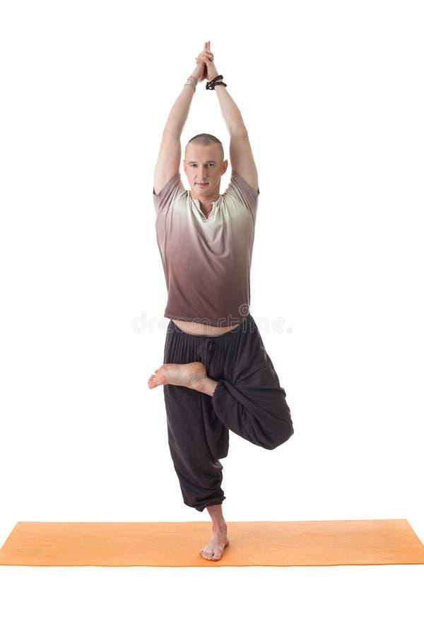 Het glimlachen yogi stellen die zich op één been bevinden stock afbeeldingen