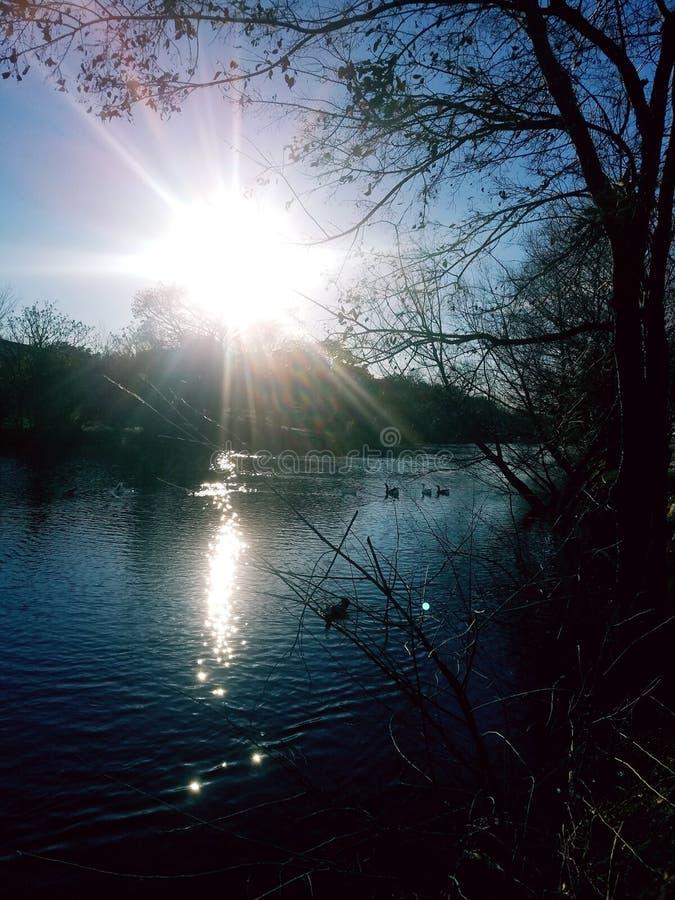 Het glinsteren nog rivier stock foto's