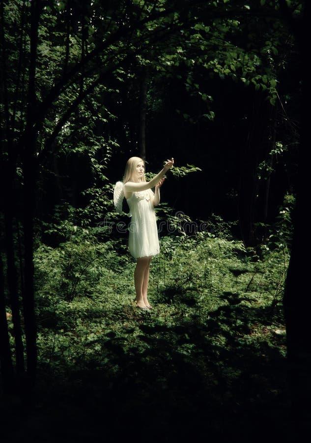 Het gloeien engel in het bos stock afbeelding