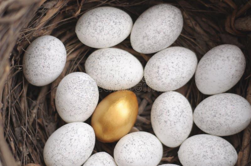 Het gouden ei royalty-vrije stock foto