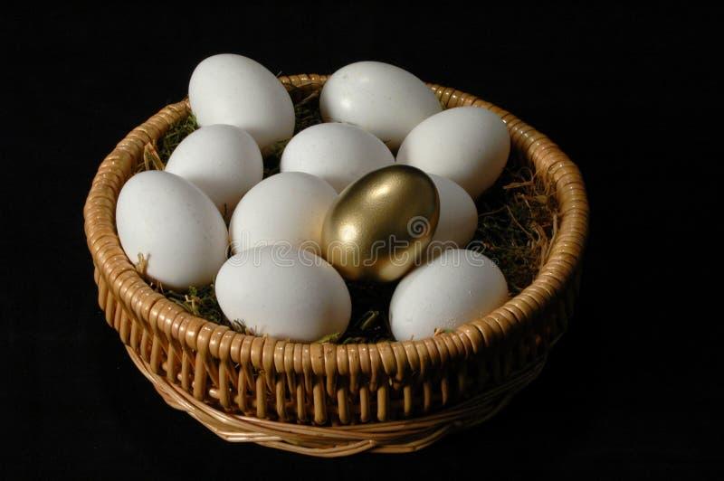 Het gouden Ei stock afbeeldingen