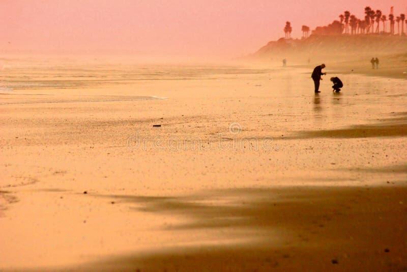Het gouden Silhouet van het Strand stock afbeelding