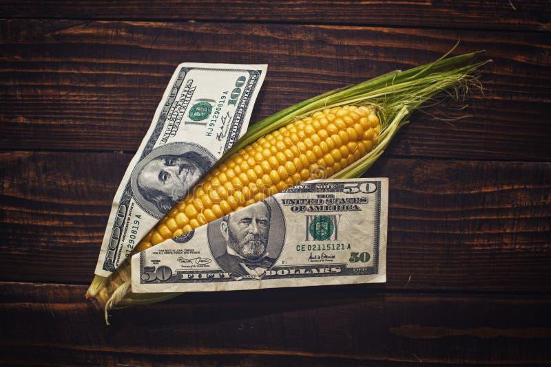 Het graan is geld stock foto