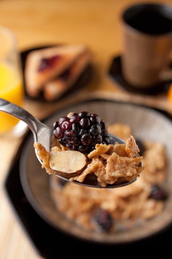 Het Graangewas van het Ontbijt van de ochtend stock fotografie