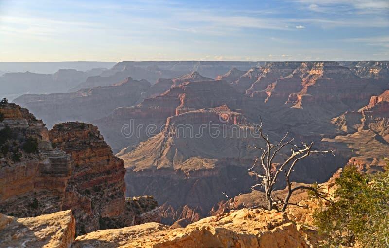 Het Grand Canyon -landschap bij de Zuidenrand, Arizona stock afbeelding