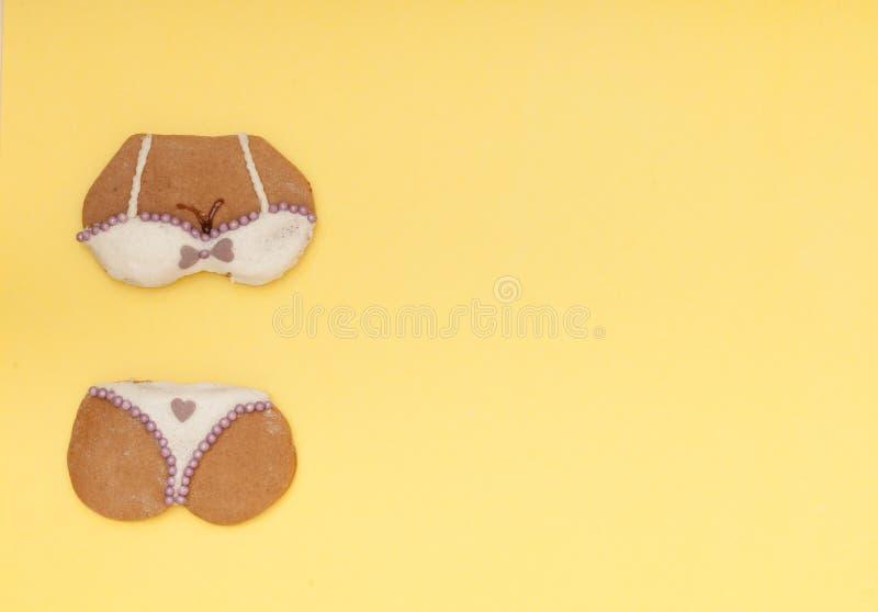 Download Het Grappige Koekje Van De De Vormpeperkoek Van Het Bikiniondergoed Stock Afbeelding - Afbeelding bestaande uit reeks, kleren: 39116491