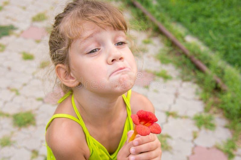 Het grappige meisje met bloem in haar hand trok een gezicht bij het bedelen royalty-vrije stock afbeelding
