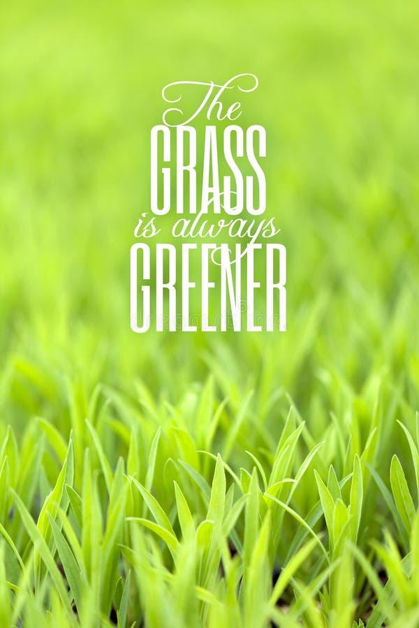 Het gras is altijd Groener Citaat stock afbeeldingen
