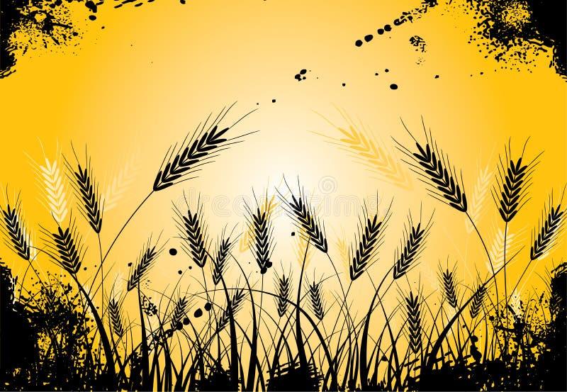 Het gras van Grunge en oren, vector stock illustratie