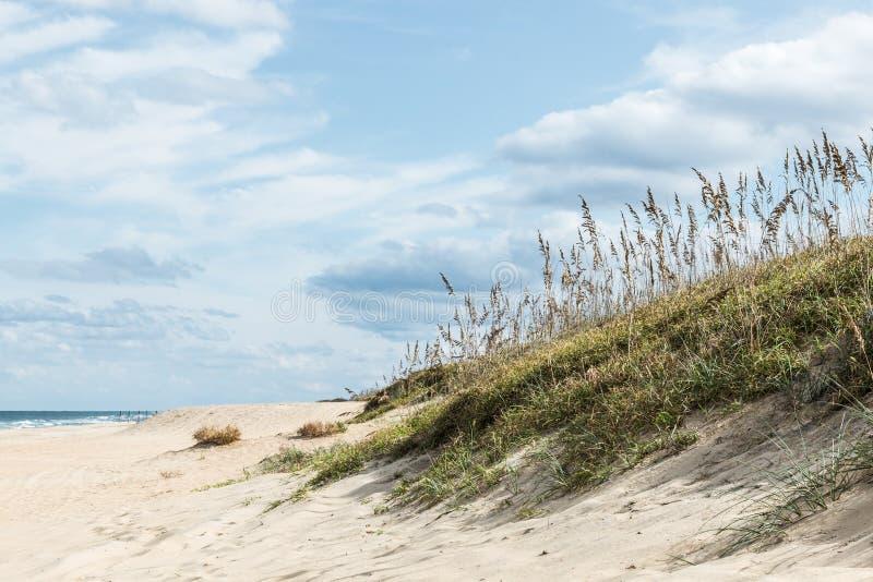 Het Gras van het strand in zandduinen stock fotografie