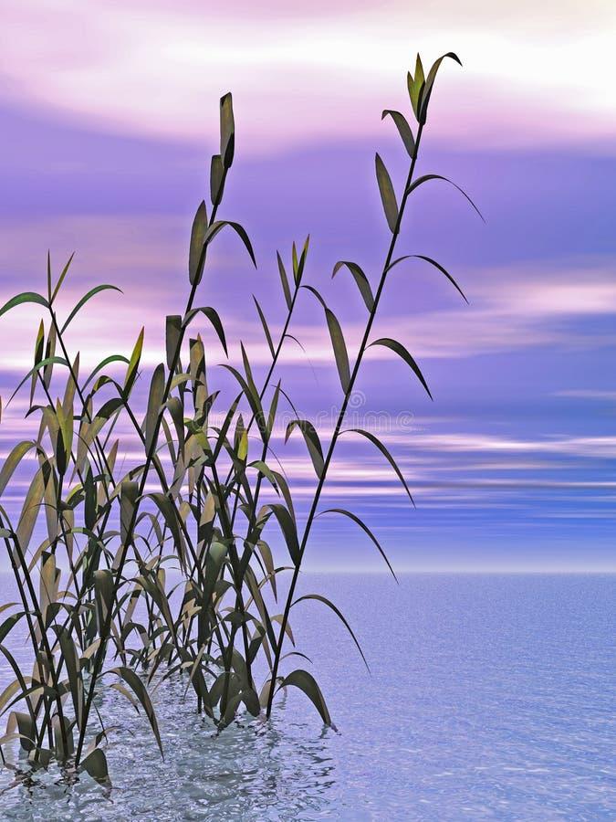 Het Gras van het water vector illustratie