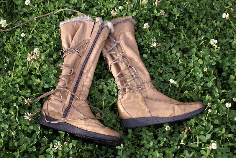 Het gras van laarzen stock foto's