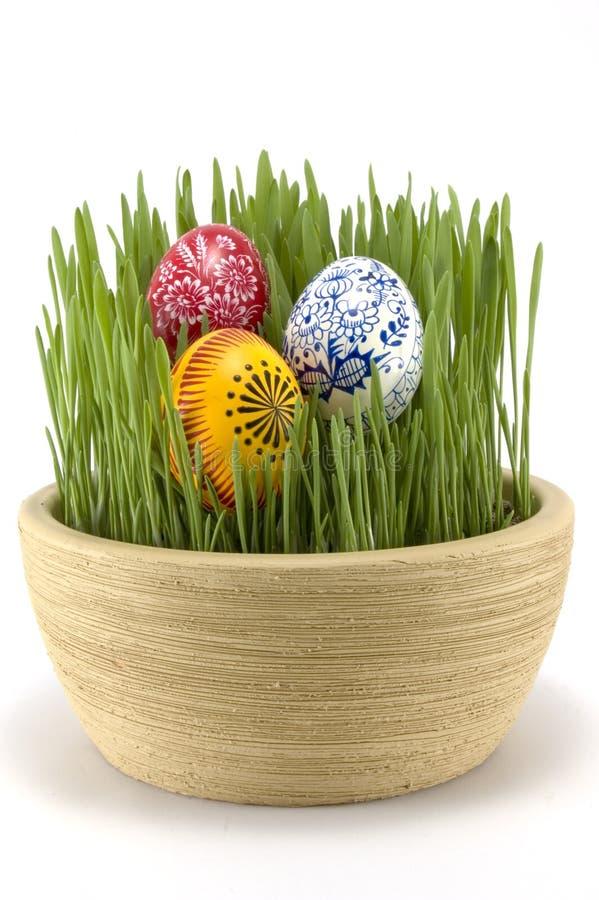 Het gras van Pasen stock afbeelding