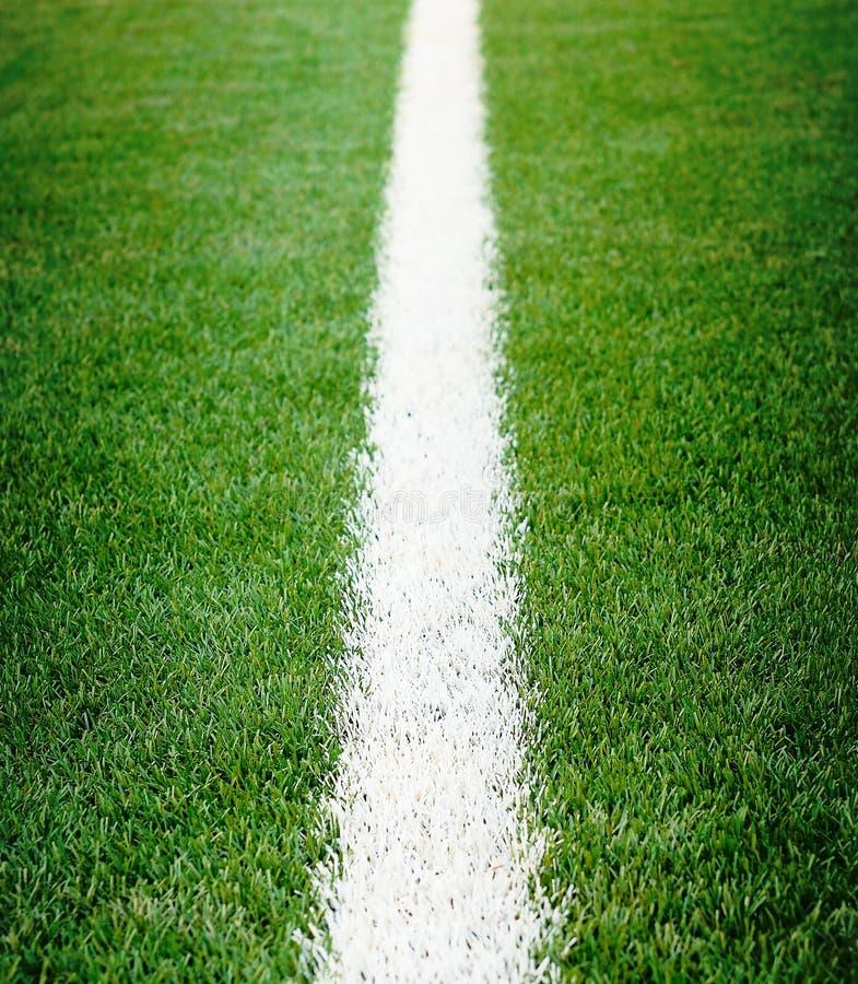 het gras van het voetbalgebied stock foto