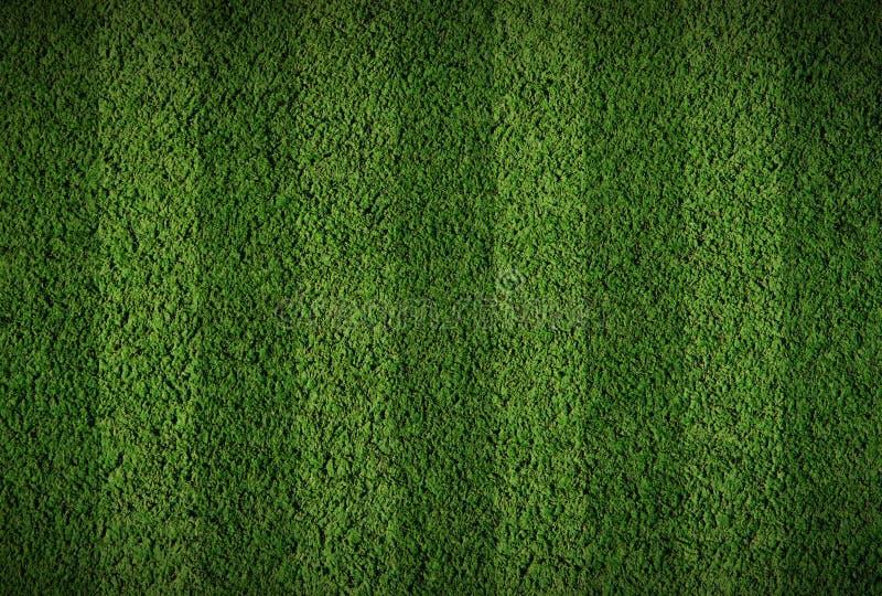 Het grasgebied van de voetbal royalty-vrije stock afbeelding