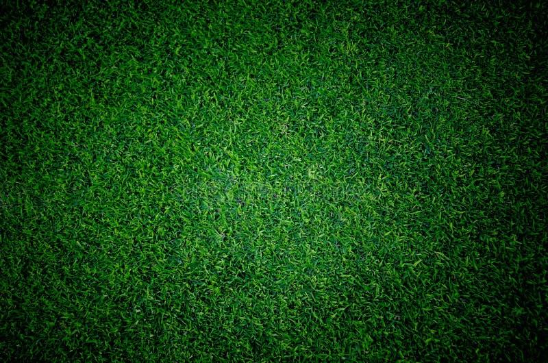 Het grasgebied van de voetbalvoetbal royalty-vrije stock fotografie