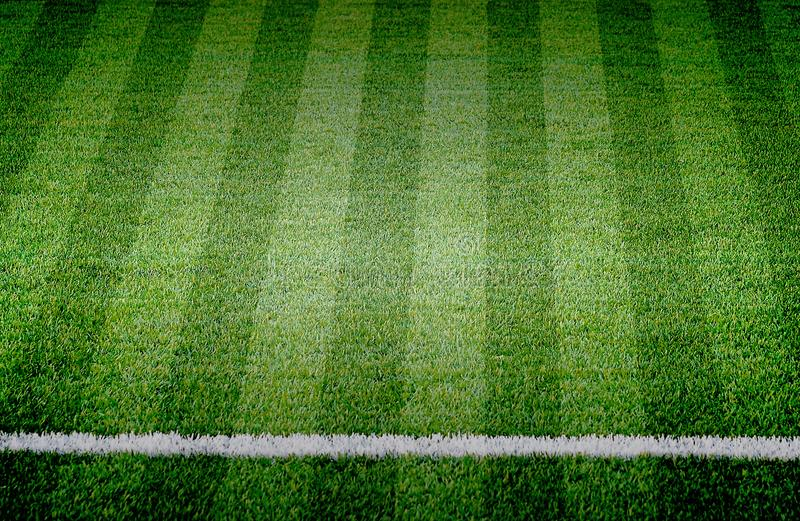 Het grasgebied van de voetbalvoetbal royalty-vrije stock foto