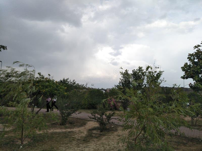 Het grashemel van wolkenbomen stock foto
