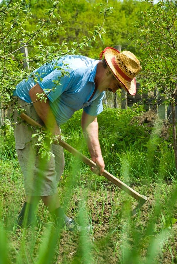 Het graven van de boer in de tuin stock foto's