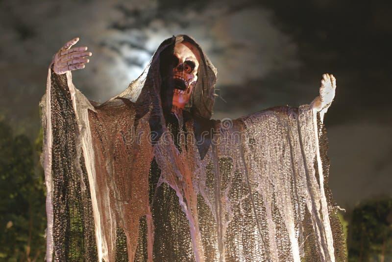 Het griezelige Skelet van Halloween royalty-vrije stock afbeeldingen