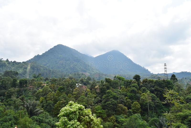 Het groene blad van Lanscapebeautri en maountain twee panoramisch van pangalengan bandung stock foto
