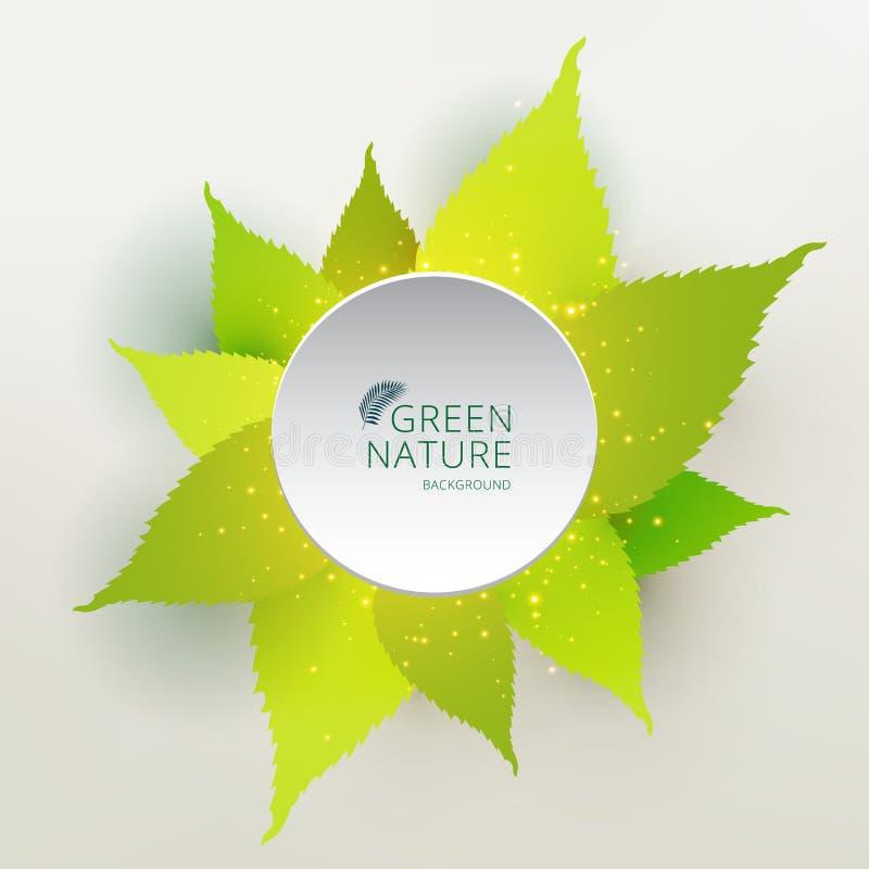 Het groene concept van de bladerenaard met de witte kleur van de etiketcirkel vector illustratie