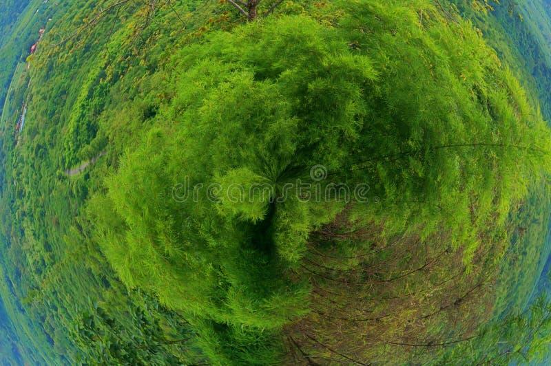 Het groene concept van de Planeetenergie voor de dag van het Wereldmilieu stock foto