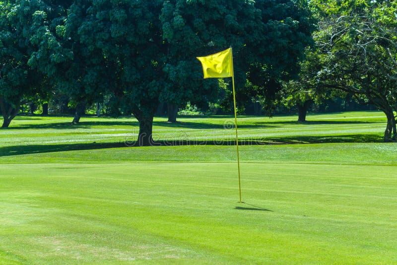 Het Groene Gat Gele Flagstick van de golfcursus stock foto