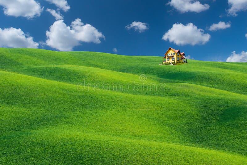 Het groene gebied stock afbeeldingen