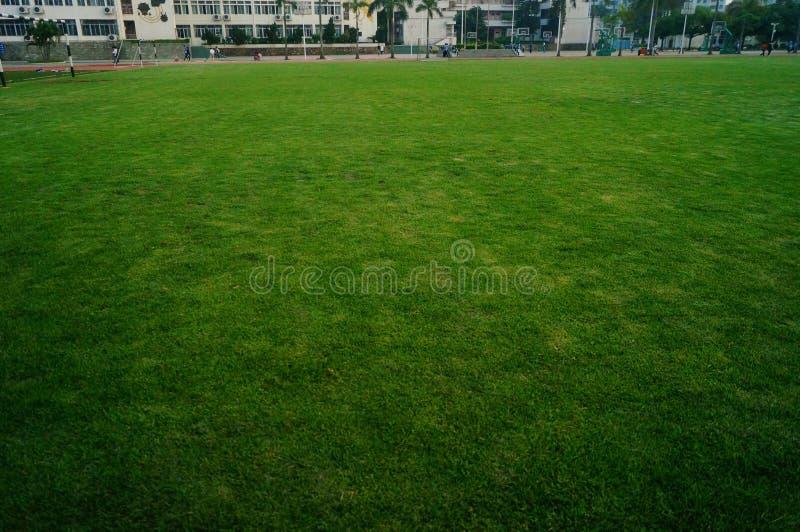 Het groene gebied van de gazonvoetbal, op school royalty-vrije stock foto's