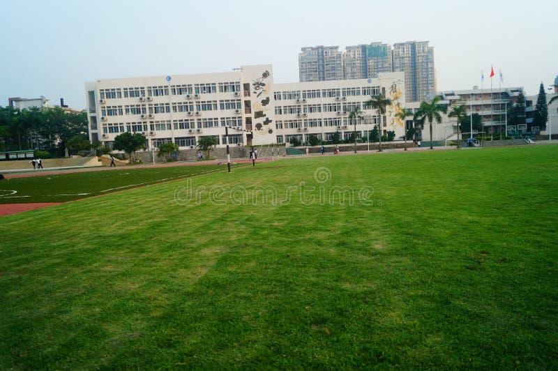 Het groene gebied van de gazonvoetbal, op school stock afbeeldingen