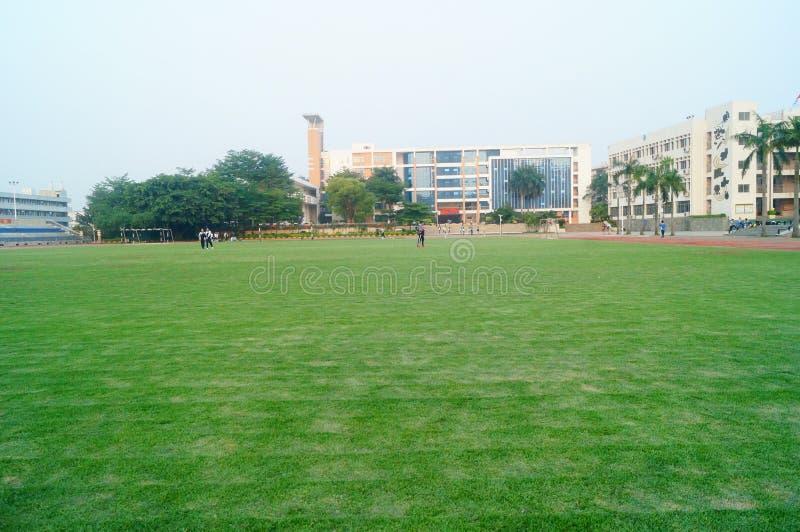 Het groene gebied van de gazonvoetbal, op school royalty-vrije stock afbeeldingen