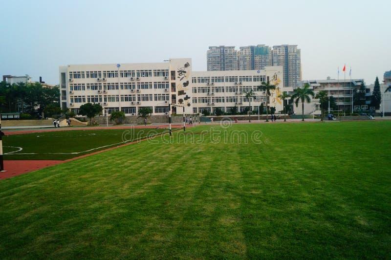Het groene gebied van de gazonvoetbal, op school stock foto
