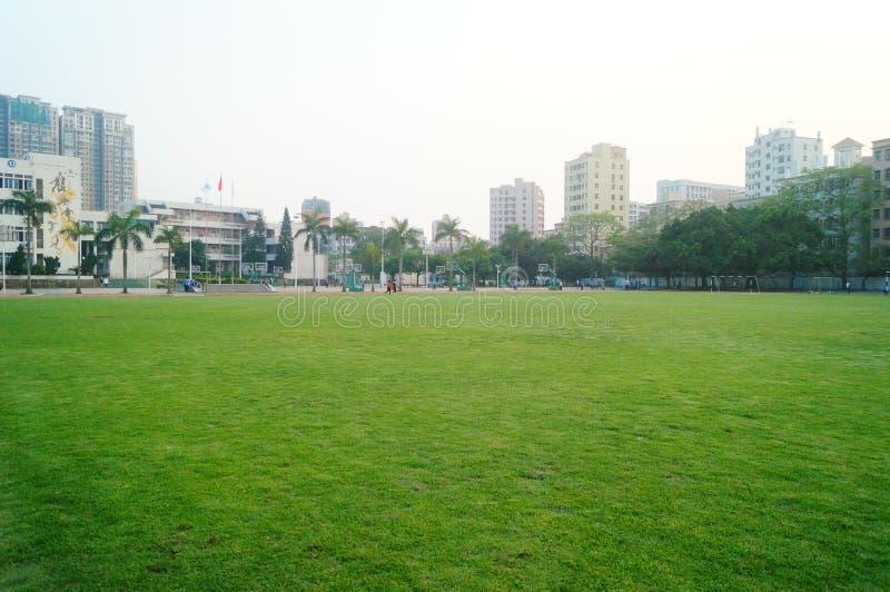 Het groene gebied van de gazonvoetbal, op school royalty-vrije stock foto