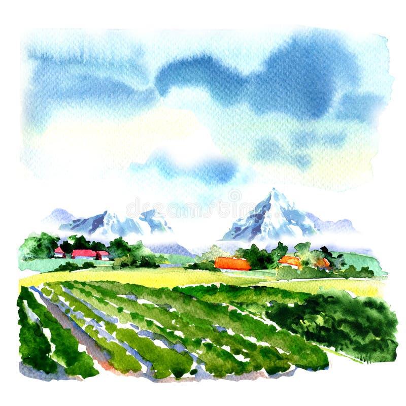 Het groene gebied van de zomerbergen, blauwe hemel, aardlandschap, waterverfillustratie stock illustratie